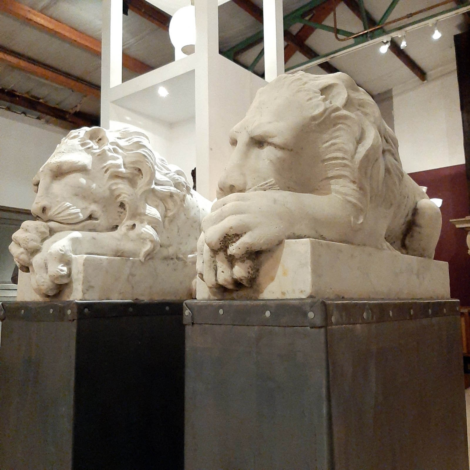 Pair of beautiful marble antique lions