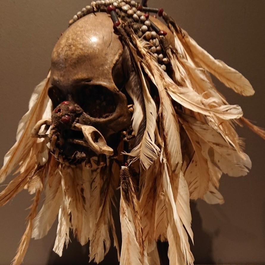 """The skull of the Dutch television program """"Van Onschatbare Waarde"""""""
